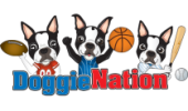 DoggieNation