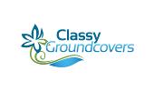 Classy Groundcovers