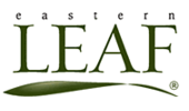 Eastern Leaf