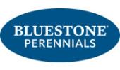 Bluestone Perennials