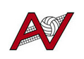 Allvolleyball