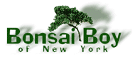 Bonsai-boy-coupons
