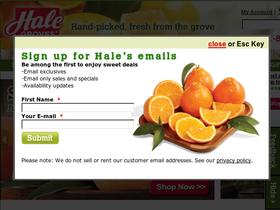Holiday Citrus