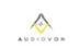 Audiovon Wireless