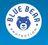 Blue Bear Protection